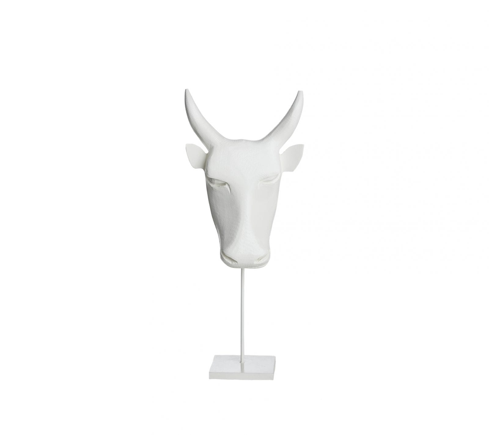 Bull Head from Swaziland in White